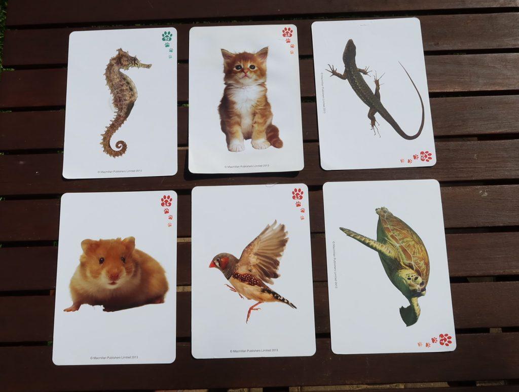 Karty obrazkowe, flashcards. Jak ich używać, jak wybrać, w co się nimi bawić? cz.1